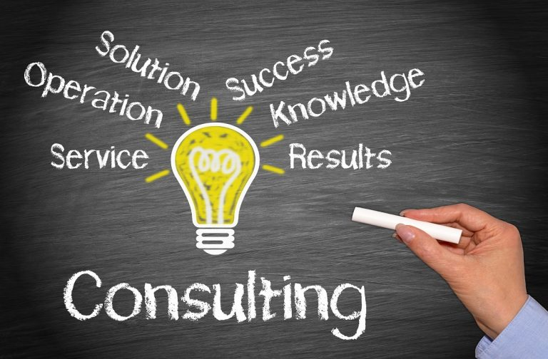 IT Professional Services and Consulting